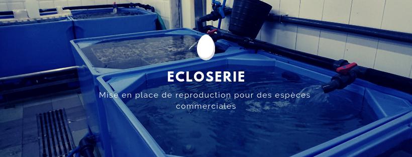 ancrage écologique expertise aquaculture environnement innovation biologie marine recherche et développement judiciaire cour d'appel pisciculture conchyliculture algoculture
