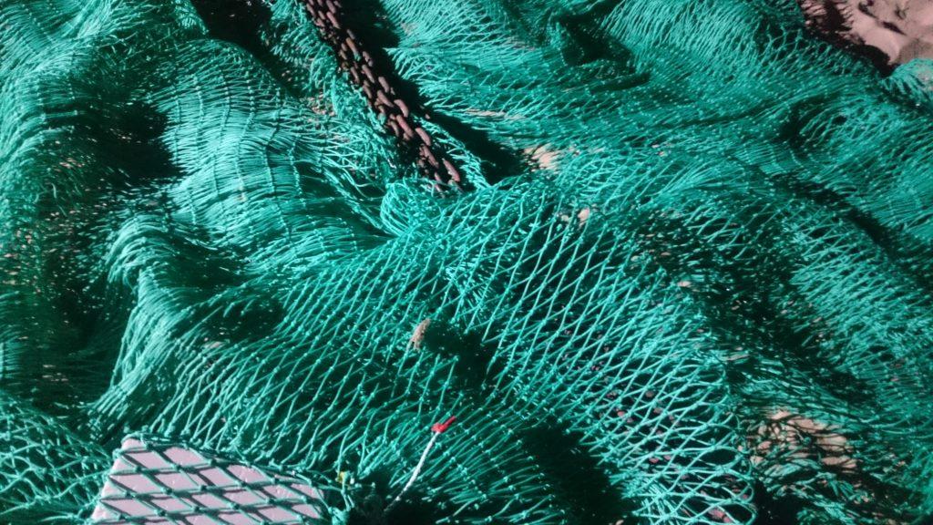 erosion expertise aquaculture environnement innovation biologie marine recherche et développement judiciaire cour d'appel pisciculture conchyliculture algoculture